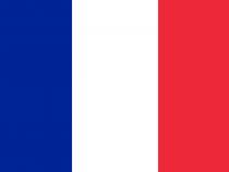 French flag - Corsi francese Torino